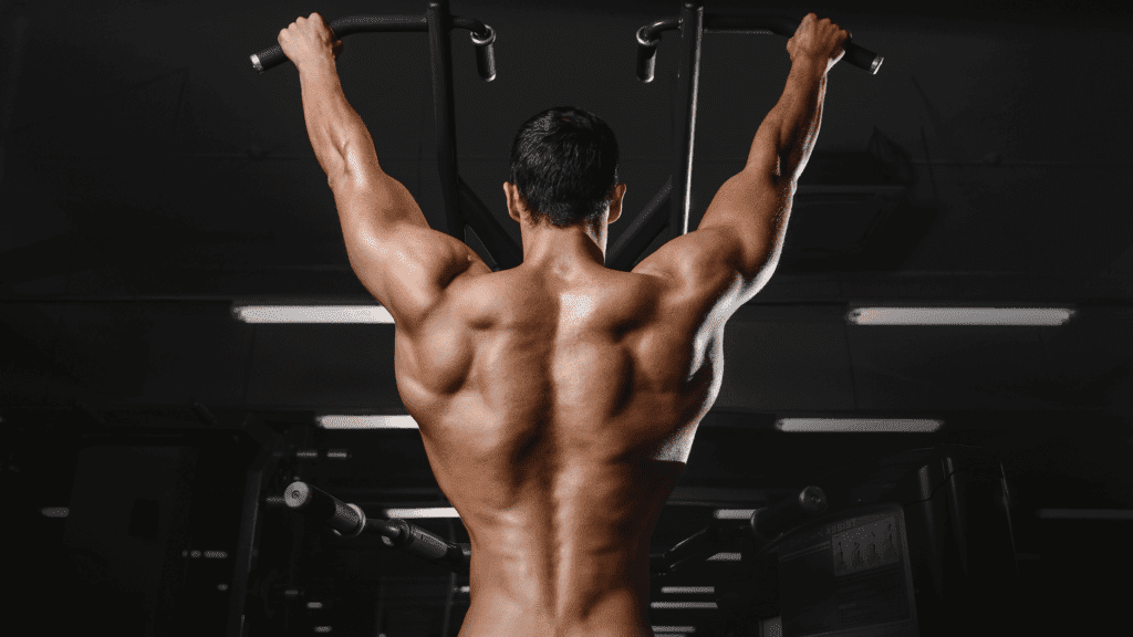 Best Muscle Building Back Exercises!