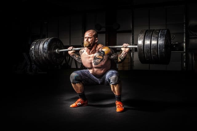 adult barbell body 17840